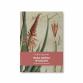 """Książka """"Raka można wyleczyć - siła lecznicza aloe arborescens"""" - O. Romano Zago"""