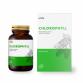 Chlorophyll - Chlorofil - Morwa biał, Lucerna, Jęczmień, Moringa